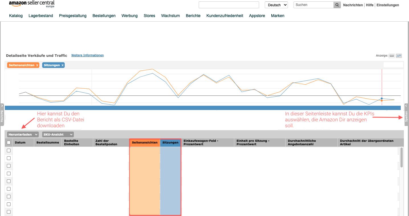 Ansicht Seitenansichten und Sitzungen im Bereich Statistiken und Berichte mit Grafik sowie Einstellungsmögichkeiten.